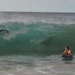 Zie Wave is coming