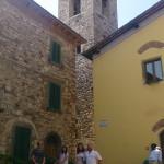 Radda torn